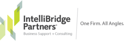Intellibridge Partners LLC
