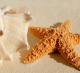 Island Seashell